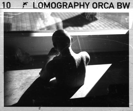 www lomography com