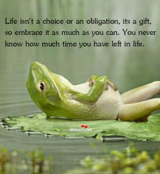 www lifeyoga com au